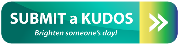 kudos submit button